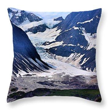 Portrait Of Majesty Throw Pillow