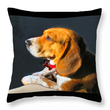 Portrait Of Pebbles - The Independent Beagle Throw Pillow