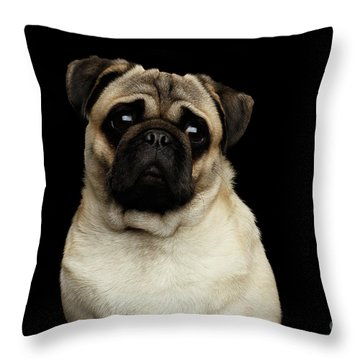 Portrait Of Pug Throw Pillow