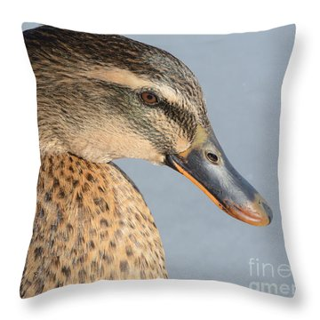 Portrait Of Rouen-mallard Mixed Breed Duck Hen Throw Pillow by Merrimon Crawford