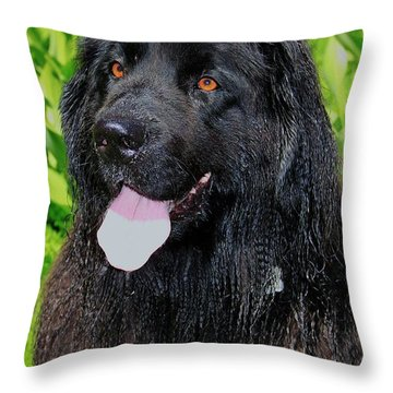 Portrait Of Sierra Throw Pillow