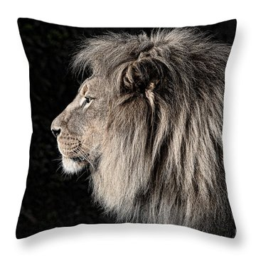 Portrait Of The King Of The Jungle II Throw Pillow