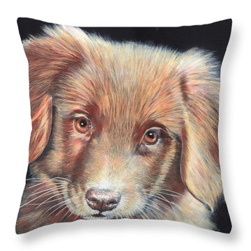 Portrait Of Toby Throw Pillow