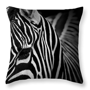 Portrait Of Zebra In Black And White V Throw Pillow