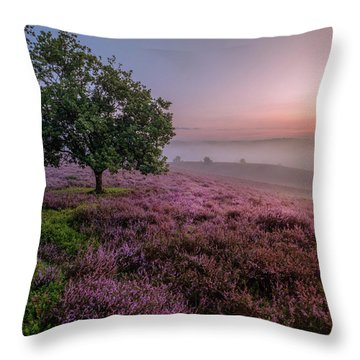 Posbank Throw Pillow