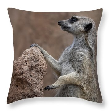 Pose Of The Meerkat Throw Pillow by Ernie Echols