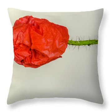 Posing Fire Red Poppy Throw Pillow