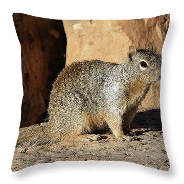 Posing Squirrel Throw Pillow