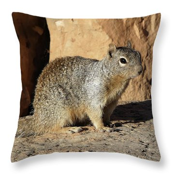 Posing Squirrel Throw Pillow