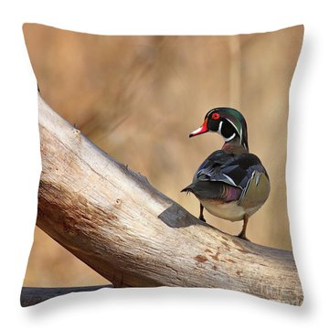 Posing Wood Duck Throw Pillow