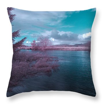 Throw Pillow featuring the digital art Post Flood Surreal by Chriss Pagani
