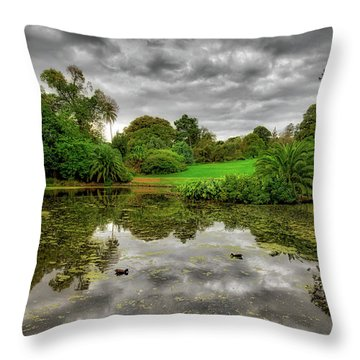Throw Pillow featuring the photograph Post-modern Ducks by Ross Henton