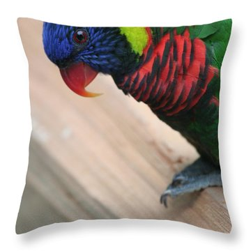 Throw Pillow featuring the photograph Post Position by Laddie Halupa