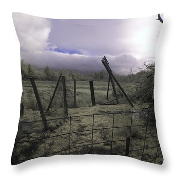 Throw Pillow featuring the photograph Post Storm by Chriss Pagani