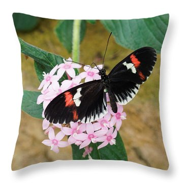 Throw Pillow featuring the photograph Postman Butterfly, Heliconius Melpomene by Paul Gulliver