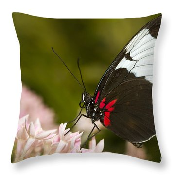 Postman On Pink Throw Pillow