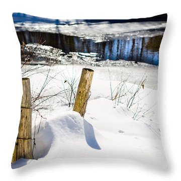 Posts In Winter Throw Pillow