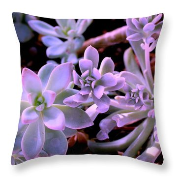 Throw Pillow featuring the photograph Pot Mates by M Diane Bonaparte