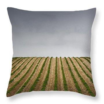 Potato Field Throw Pillow by John Short