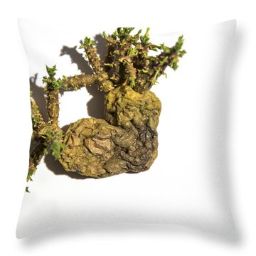 Potatoheart Throw Pillow