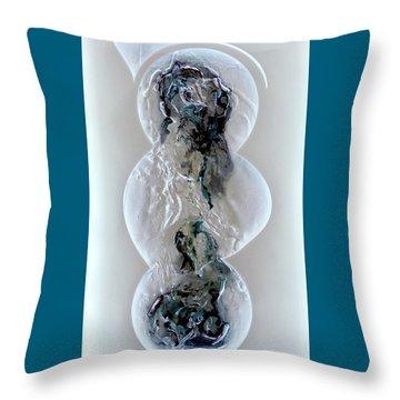 Joan Raspo Throw Pillows