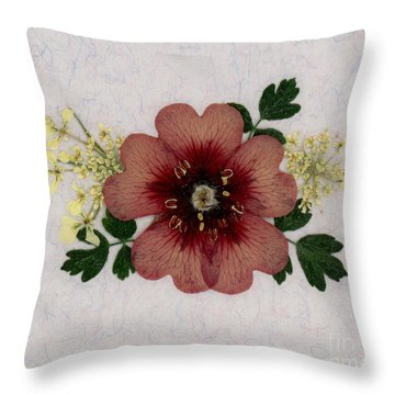 Potentilla And Queen-ann's-lace Pressed Flower Arrangement Throw Pillow