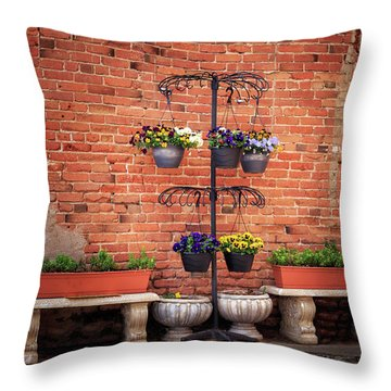 Throw Pillow featuring the photograph Potted Plants And A Brick Wall by James Eddy
