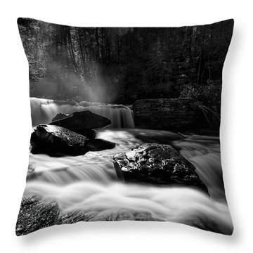 Potters Creek Throw Pillow