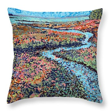 Pottery Creek Throw Pillow