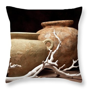 Pottery With Branch I Throw Pillow