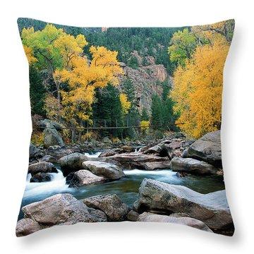 Poudre Gold Throw Pillow