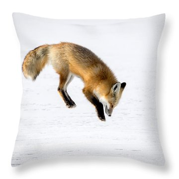 Pounce Throw Pillow by Jack Bell