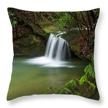 Pounder Branch Falls # 2 Throw Pillow by Ulrich Burkhalter