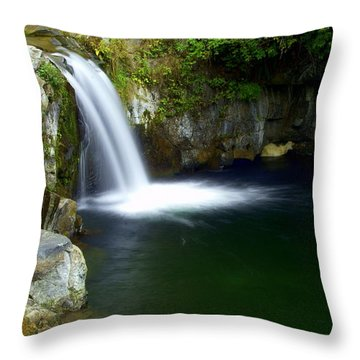 Pour Off Throw Pillow by Marty Koch