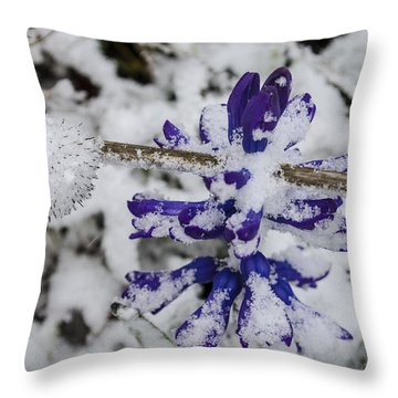 Powder-covered Hyacinth Throw Pillow