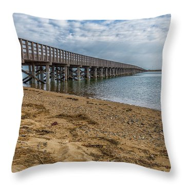 Powder Point Bridge Throw Pillow
