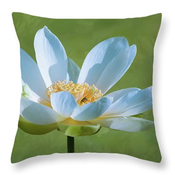 Power Of A Lotus Throw Pillow by Carolyn Dalessandro