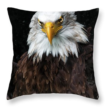 Power Of The Eagle Throw Pillow