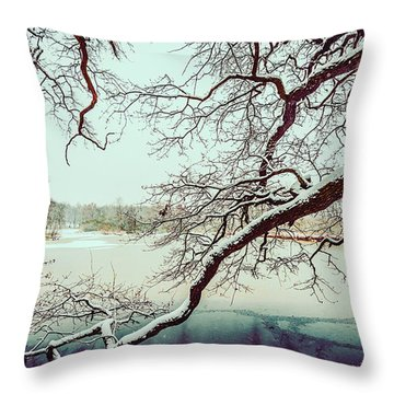 Power Of The Winter Throw Pillow