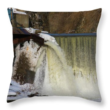 Power Station Falls On Black River One Throw Pillow