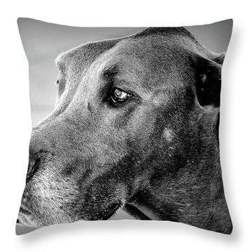 Throw Pillow featuring the photograph Powerful Majesty by Barbara Dudley