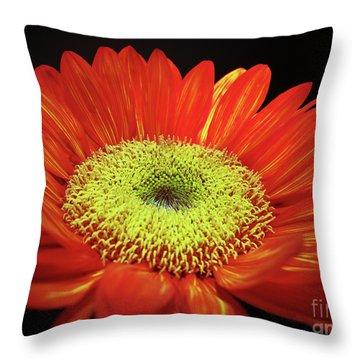 Prado Red Sunflower Throw Pillow