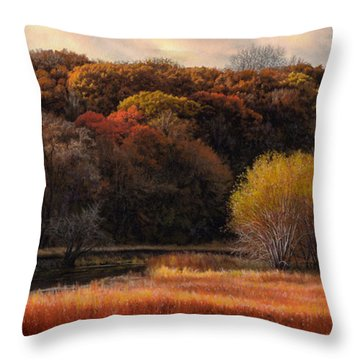 Prairie Autumn Stream Throw Pillow