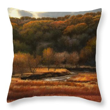 Prairie Autumn Stream No.2 Throw Pillow