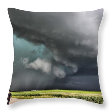 Prairie Beast Throw Pillow by Ryan Crouse
