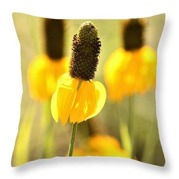 Prairie Coneflower In Morning Light Throw Pillow