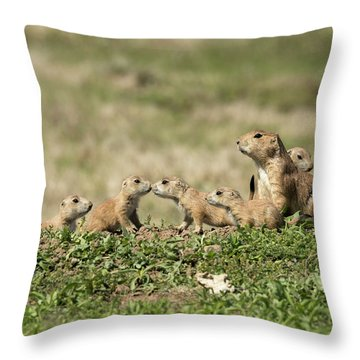 Prairie Dog Family 7270 Throw Pillow