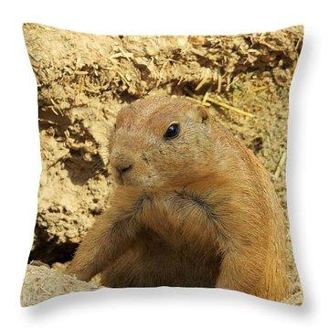Prairie Dog Peek Throw Pillow