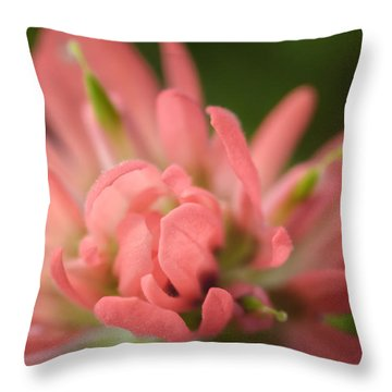 Prairie Fire 2 Throw Pillow by James Barber