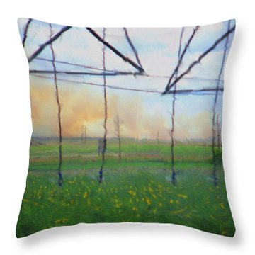 Prairie Fire Heat Throw Pillow by Aliceann Carlton